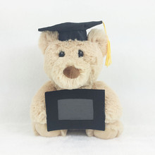 2017 New Graduation Bear Plush Toys Cute Teddy Bear Dolls Kids Students Gradudate Gift 20cm(China)