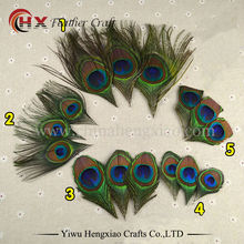 10pcs beautiful Peacock Feather Trimmed peacock eye costumes Necklace earrings accessories wedding Decorative(China)