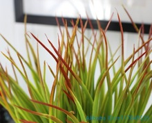 1 PCS Artificial Plastic Red Top Green Long Leaves Grass Plant Home Decoration F371