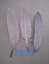100pcs/lot!13-18cm long Dark Grey Goose Feathers,Hat Trimming,Feathers for Millinery,Fascinators&Crafts(China)