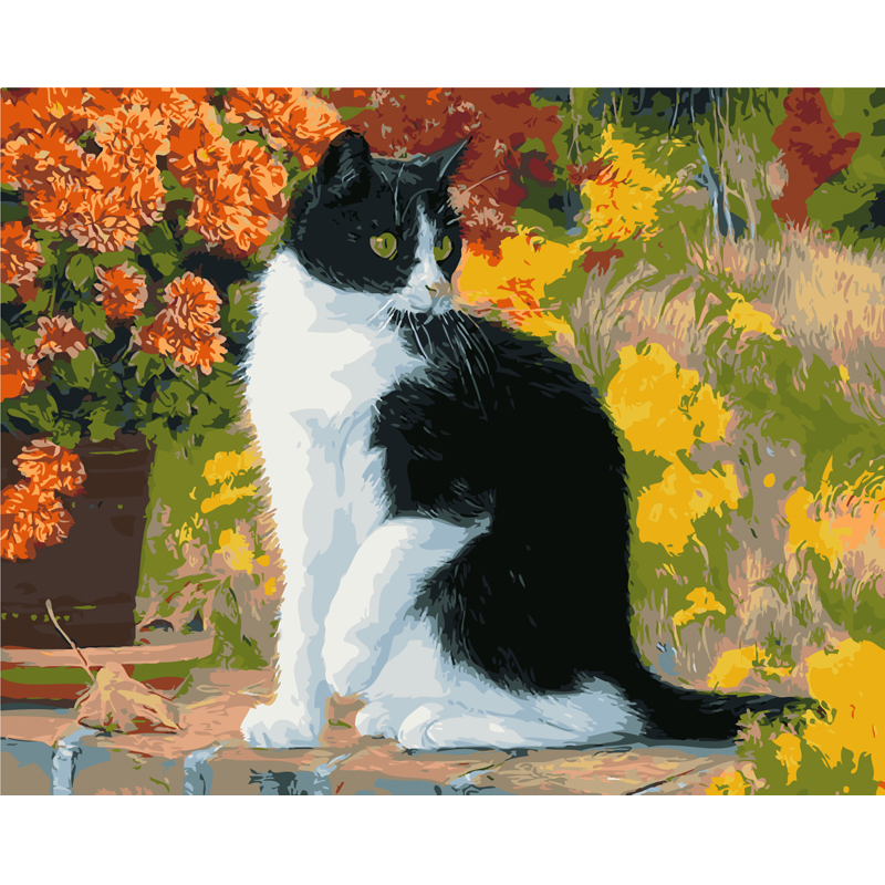 Frameless Pictures Painting By Numbers Wall Pictures For living Room Abstract Oil Painting Canvas Painting Practicing Animal cat(China (Mainland))