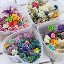 1 Box Mixed Dried Flowers Nail Art DIY Preserved Flower With Heart-Shaped Box Glass Bottle Decor(China)