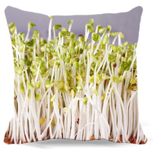 Growing bean sprouts white gray plant Soft Square Pillows case Cotton polyester Home car sofa Decorative Cushion cover 40 45 cm
