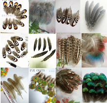 2017new,20 pieces / pack of high quality natural pheasant feathers, diy handicraft jewelry accessories(China)