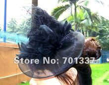 wholesale Black FASCINATOR ,dances,races,weddings,Party HAT costume purple flower hair Hat  H112