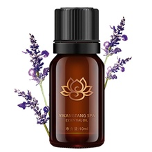 New Arrival Lavender Plant Fragrance Huile Essentielle Aromatherapie Essential Oils for Aromatherapy Shrink Pores Massage
