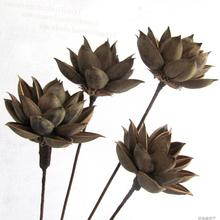 Dry lotus flowers artificial flowers artificial flowers dried flowers home furnishings natural entrance table