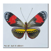 Cheap Heavy Texture Acrylic Oil Painting Colorful Butterfly Canvas Painting Perfect Wall Art For Living Room Decoration Unframed(China)