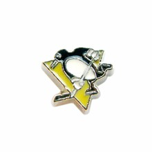 20Pcs Enamel American Hockey Pittsburgh Penguins Floating Charm Alloy NHL Floating Glass Locket Charms For Living Memory Locket