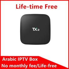 2017 best Bee IPTV Arabic box android 6.0 Support wifi HDMI life time free subscription Better Great bee - Ulive Store store