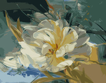 Frameless Free Shipping Arcylic Paint DIY Digital Oil Painting By Numbers Canvas 40X50cm white Flower home decoration(China)
