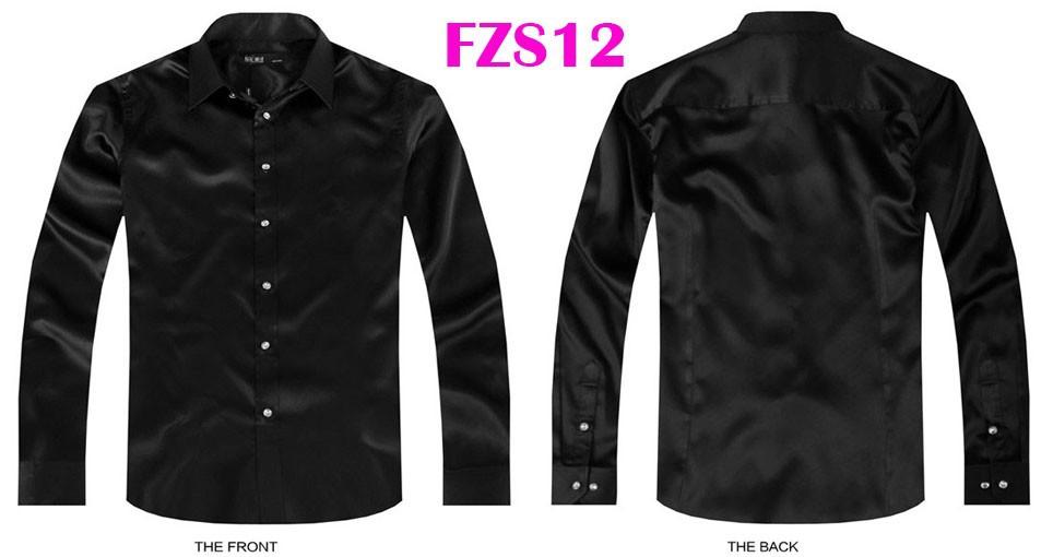 FZS12