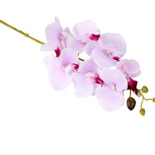 Artificial Orchid Flowers Real Touch Artificial Butterfly Orchid Flowers Wedding Decoration Home Party Festival Decoration(China)