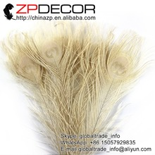 ZPDECOR 50pcs/lot  25-30cm(10-12inch) Hand Select Beautiful Decolorizing Ivory Dyed Peacock Feather for Carnival Decoration