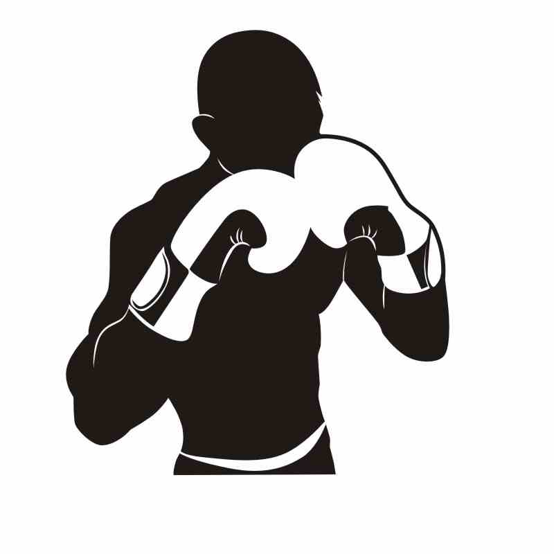 DCTAL Boxing Glove Sticker Kick Boxer Play Car Decal Free Combat Posters Vinyl Striker Wall Decals Parede Decor
