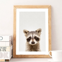 Nursery Animal Raccoon Canvas Prints Wall Art Picture , Woodland Animals Raccoon Photo Canvas Painting Poster Baby Room Decor(China)