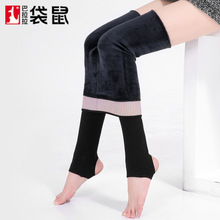 The New Type Of Activated Carbon Ion Mink Cashmere Nylon Base Trousers Anti Pilling No Trace Foot Step Women Wear One Pants