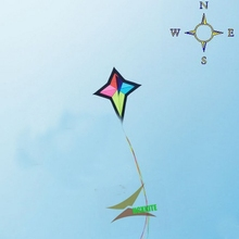 free shipping high quality 6m polar star delta kite with handle line outdoor flying toy nylon ripstops large kite surf octopus(China)