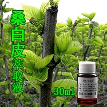 DIY skin care cosmetics raw materials Morus alba extract 30ML whitening moisture promote horny metabolism
