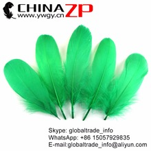 Leading Supplier CHINAZP Factory 200 pcs/lot Size 10-20cm Beautiful Dyed Kelly Green Soft Goose Nageoires Feathers(China)