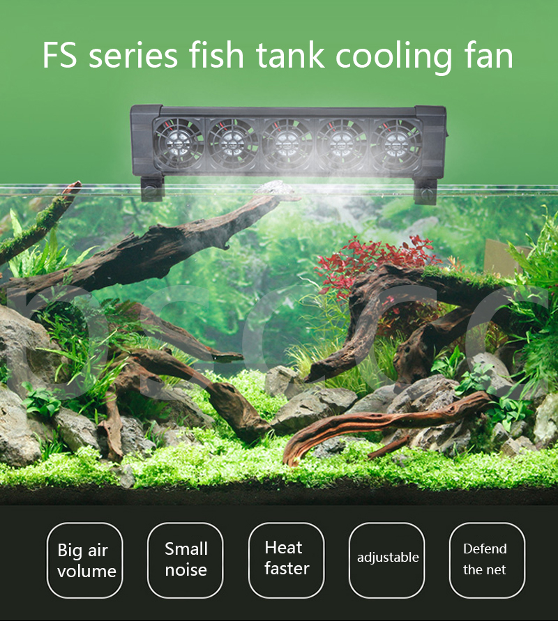 detail feedback questions about fishing cooling equipment aquarium