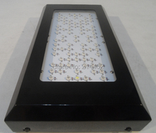 New 240w Lighthouse Hydro BlackStar LED Grow light Flowering 3W LED's dropshipping