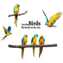Macaw wall stickers Let the birds fly in the sky animal 3d vinyl decals home decoration living room bedroom art mural wallpaper