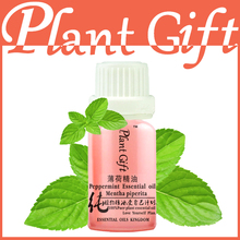 100% Pure Plant Essential Oils Mint Oil 10ml Antibacterial Toothache United States Imports Mint Oil Treatment(China)