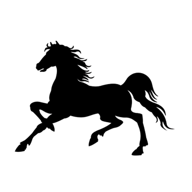 Color Name: As Picture Vinyl Decal Car Window Wall Love Symbol Pony Funny Sticker - one for Each Side 58cm x 46.4cm 2 x Horse Heart
