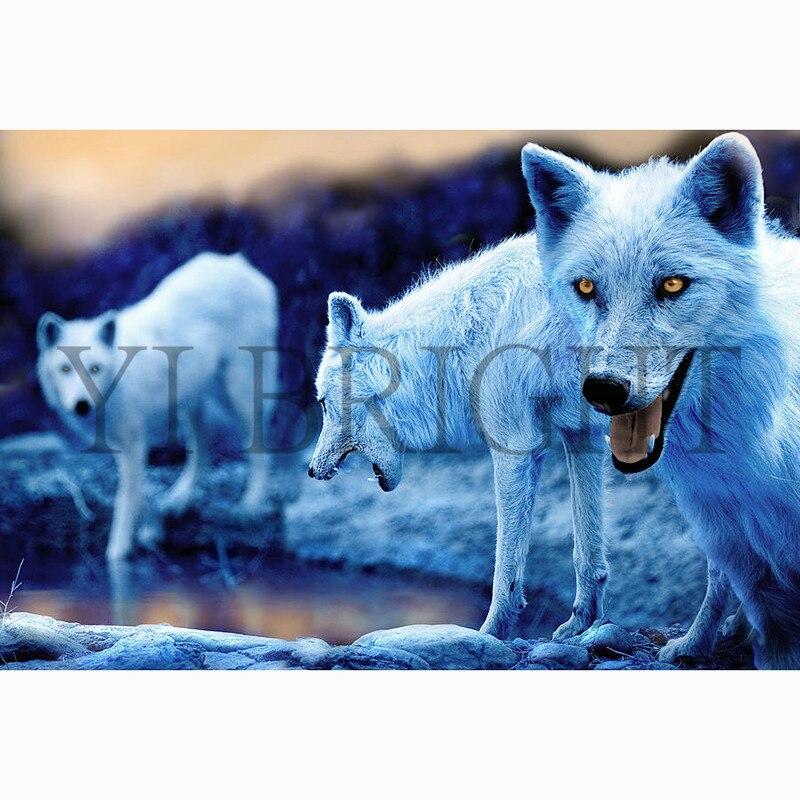 Arctic Wolves Amber Eyes
