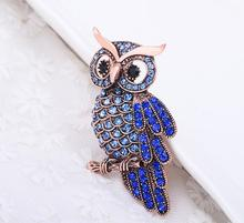 Women's Men's Owl Korean Zinc Alloy Trendy Imitation Rhinestone Blue Brooch spille donna badge Christmas Gifts Accessories(China)