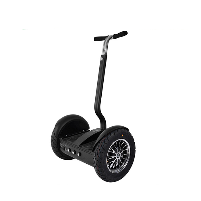 self balance electric chariot (1)