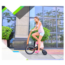 parent-child twin tricycle for exercise,3 wheel bike seatless hover bicycle