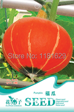 (Mix minimum order $5)1 original pack 8 pcs Pumpkin Seeds vegetable seeds free shipping(China)