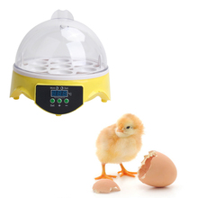 Mini 7 Eggs Incubator Poultry Incubator Brooder Digital Temperature Control Hatchery Machine for Chicken Duck Bird Pigeon Egg(China)