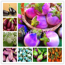 Food Coloring Plants Promotion-Shop for Promotional Food Coloring ...