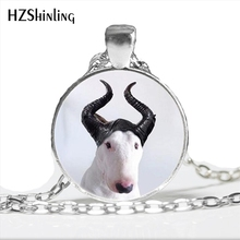 NS-00793 Bull Terrier Dog Cute Animal Photo Glass Necklace Steampunk Silver Long Chain Pendant Jewelry Best Gift For Friend HZ1(China)