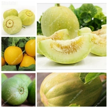 Mini Garden 30pcs/ bag Sweet Honey Muskmelon Seeds Juicy Melon Organic Fruit Plant Bonsai Fruit for Flower Pot Planters(China)