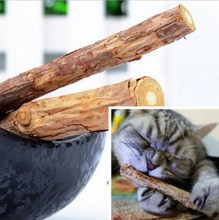 New Arrival 5pcs Pet Cat Kitten Chew Stick Treat Toy Natural Matatabi Polygama Catnip Molar(China)