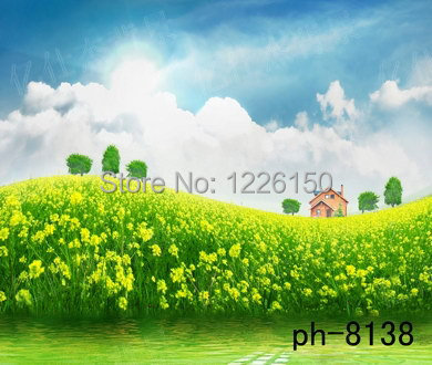 Free New arrival 10ft x 10ft vinyl baby spring scenic flower backdrops ph-8138,perfect newborn photography backdrop background<br>