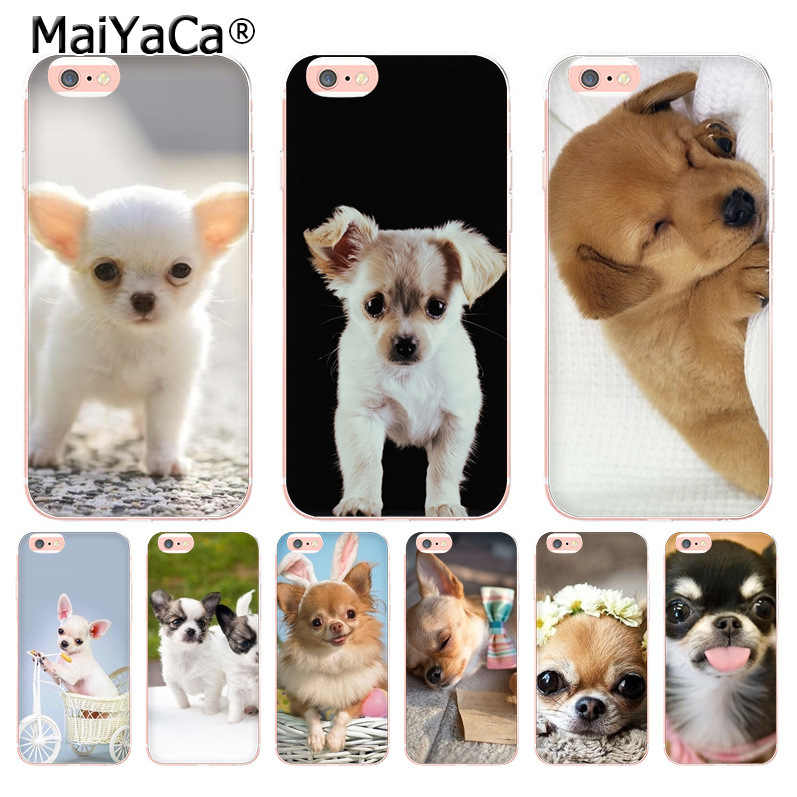 coque iphone 8 plus chihuahua