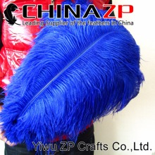 Gold Supplier CHINAZP Factory 100pcs/lot Size 45~50cm(18~20inch) Fantastic Party Decoration Dyed Blue Ostrich Drab Feathers