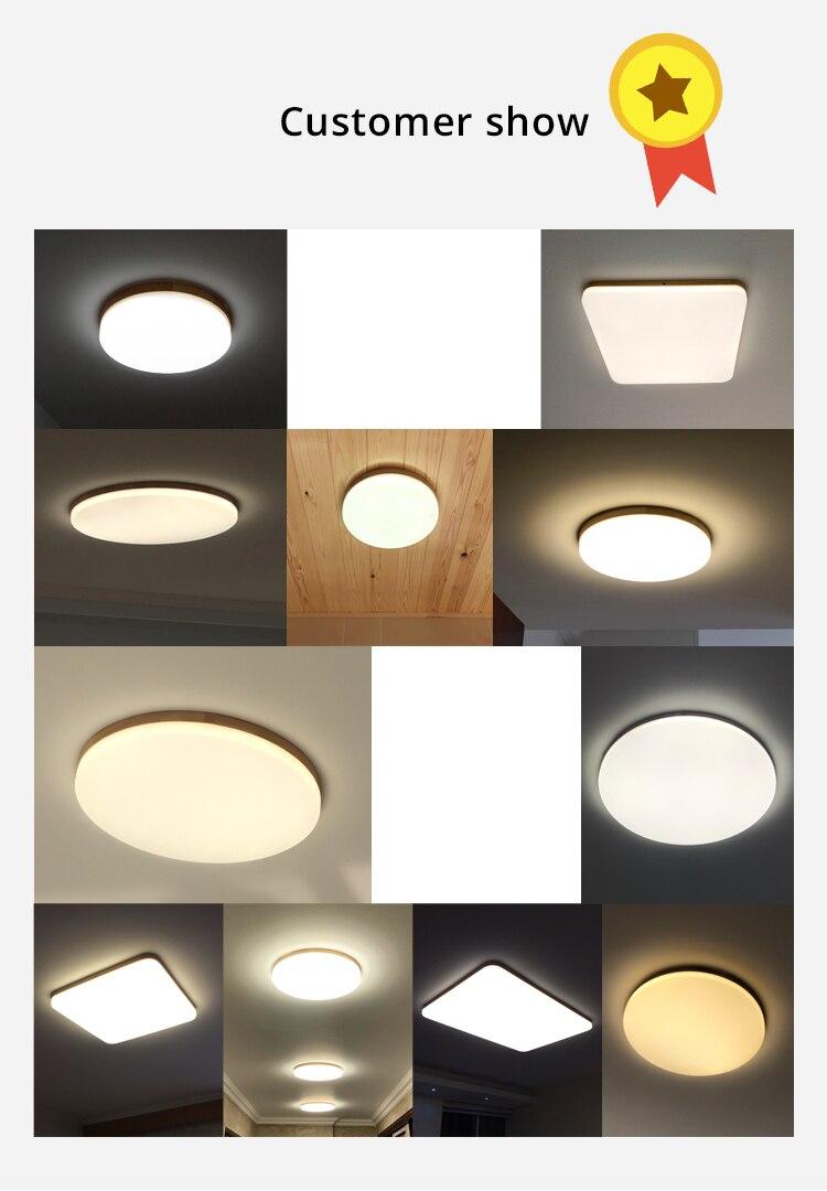 led ceiling light (4)