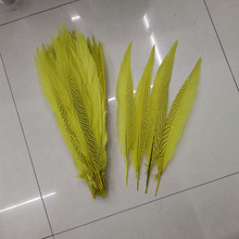 40-45cm Long Silver Pheasant Tail Feathers Natural yellow Fly/Fishing/Craft 10pcs/lot plume feather for DIY decoration(China)
