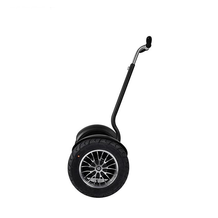 self balance electric chariot (7)