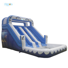 Giant Inflatable Games Blue Outdoor Beach Water Slides Funny Game For Kids Inflatable Bouncers