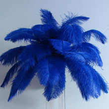 New Royal Blue Ostrich Feathers 40-45cm Natural Soft Pena Plumage 10pcs/lot Performance Plume Party Wedding Decoration(China)