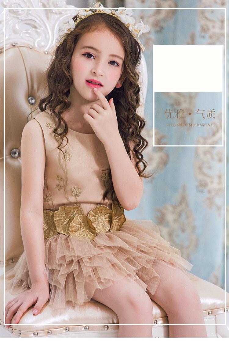 Retail Girls Dress champagne Lace Fluffy Tutu Ball Gown Flower Girl For Wedding Party Sleeveless Performance Dress<br>