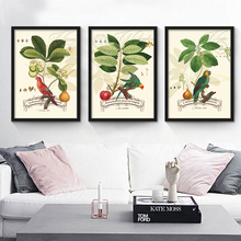 HAOCHU American Country Living Room Decorative Canvas Painting Flower Bird and Plants Paintings Restaurant Posters(China)