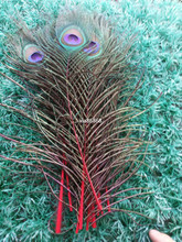 Beautiful red peacock eye feathers 100 pcs 25-30 cm / 10-12 inches decoration celebration